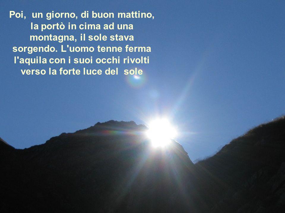 Poi, un giorno, di buon mattino, la portò in cima ad una montagna, il sole stava sorgendo.