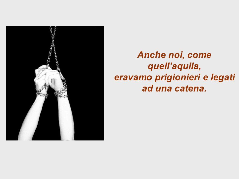 Anche noi, come quellaquila, eravamo prigionieri e legati ad una catena.