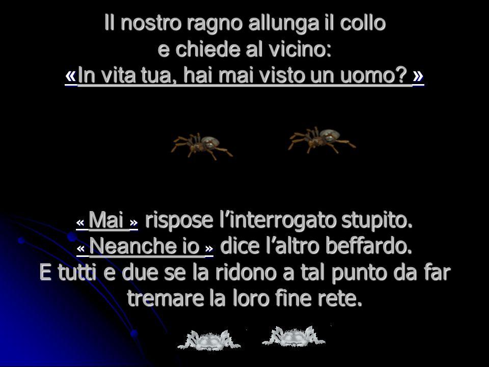 Eppure esso si ritiene la creatura più elevata delluniverso. Accanto a lui cè un altro ragno a lavoro, ed entrambi tessono la loro tela argentea. ed e