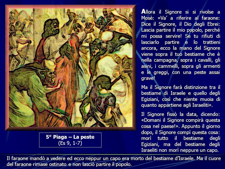 5° Piaga – La peste (Es 9, 1-7) A llora A llora il Signore si si rivolse a Mosè: «Va a riferire al faraone: Dice il Signore, il Dio degli Ebrei: Lasci