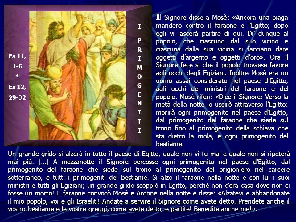 Es 11, 1-6 * Es 12, 29-32 I P R I M O G E N I T I I l I l Signore disse a Mosè: «Ancora una piaga manderò contro il faraone e lEgitto; dopo egli vi la