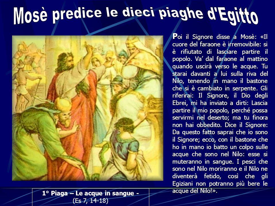 1° Piaga – Le acque in sangue - (Es 7, 14-18) P oi P oi il Signore disse a Mosè: «Il cuore del faraone è irremovibile: si è rifiutato di lasciare part