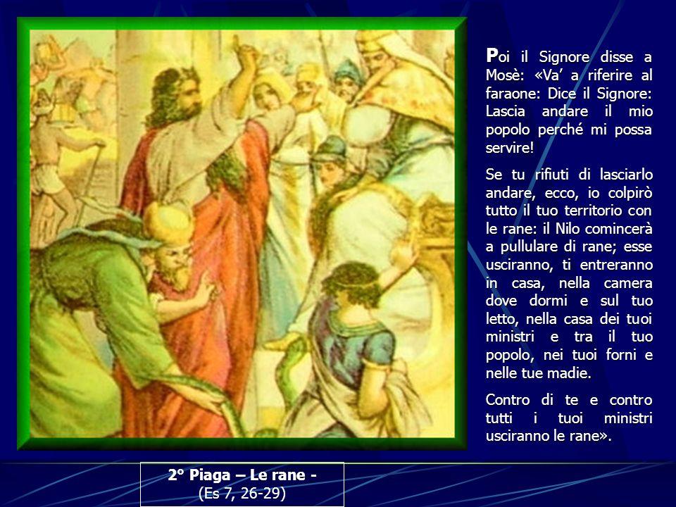 2° Piaga – Le rane - (Es 7, 26-29) P oi P oi il Signore disse a Mosè: «Va a riferire al faraone: Dice il Signore: Lascia andare il mio popolo perché m