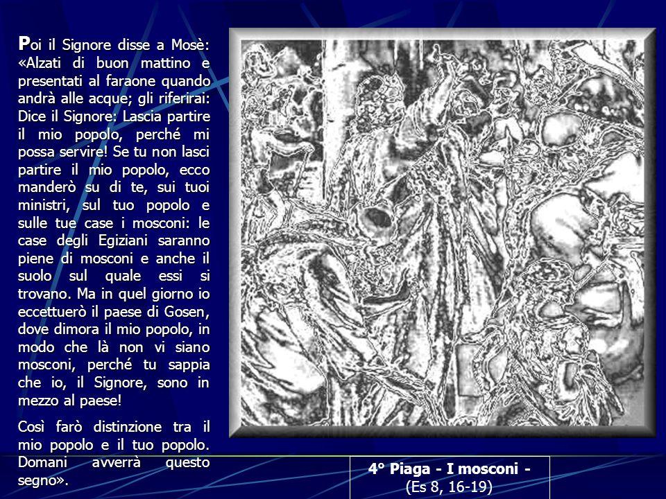 4° Piaga - I mosconi - (Es 8, 16-19) P oi P oi il Signore disse a Mosè: «Alzati di buon mattino e presentati al faraone quando andrà alle acque; gli r