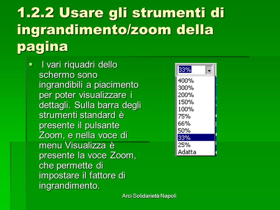 Arci Solidarietà Napoli 1.2.2 Usare gli strumenti di ingrandimento/zoom della pagina I vari riquadri dello schermo sono ingrandibili a piacimento per