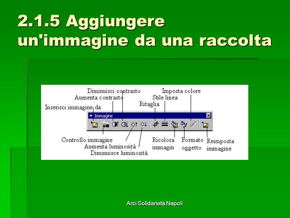 Arci Solidarietà Napoli 2.1.5 Aggiungere un immagine da una raccolta