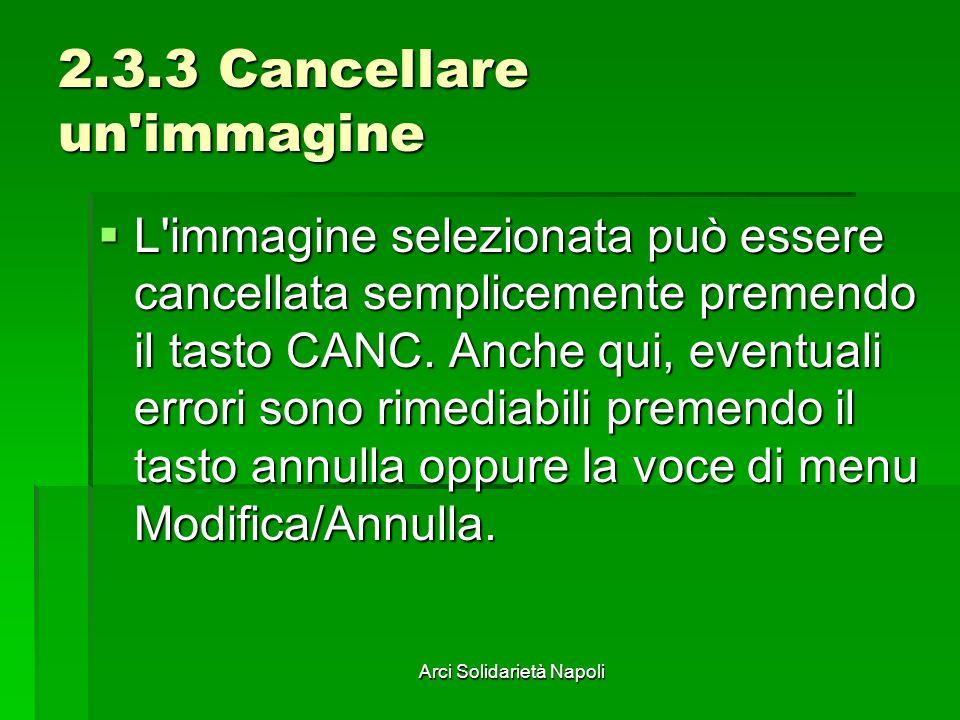 Arci Solidarietà Napoli 2.3.3 Cancellare un'immagine L'immagine selezionata può essere cancellata semplicemente premendo il tasto CANC. Anche qui, eve
