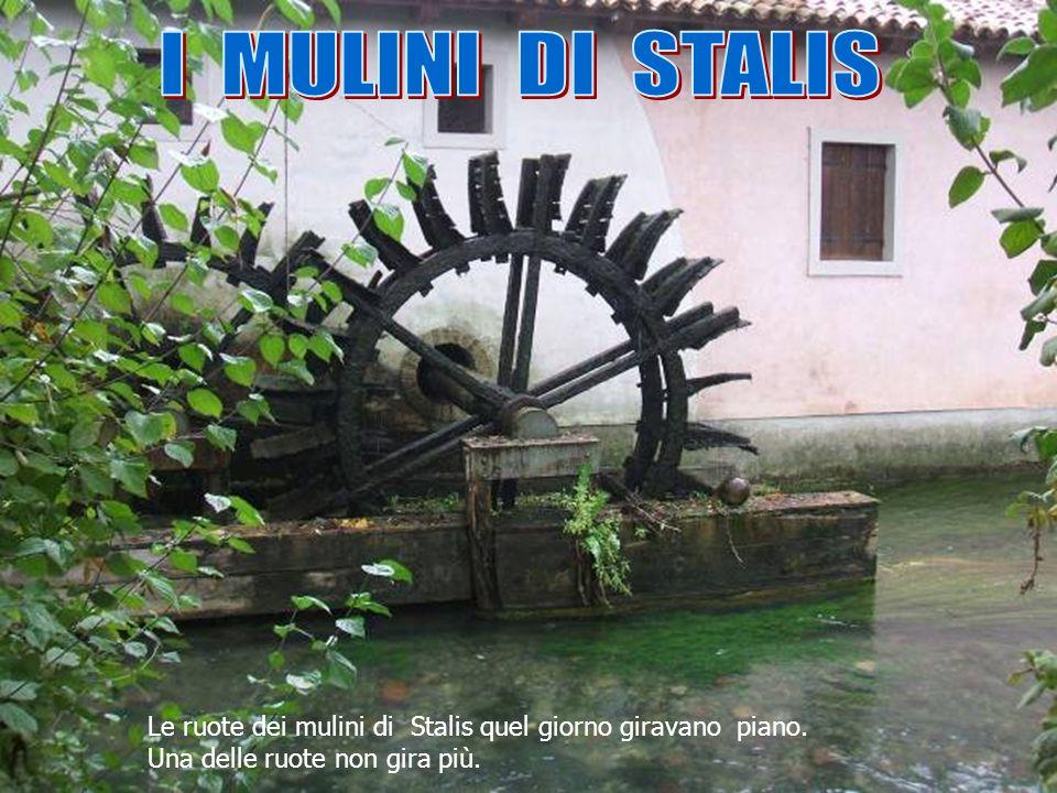 Le ruote dei mulini di Stalis quel giorno giravano piano. Una delle ruote non gira più.