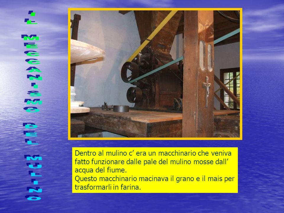 Dentro al mulino c era un macchinario che veniva fatto funzionare dalle pale del mulino mosse dall acqua del fiume.