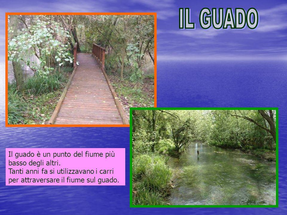 Il guado è un punto del fiume più basso degli altri.
