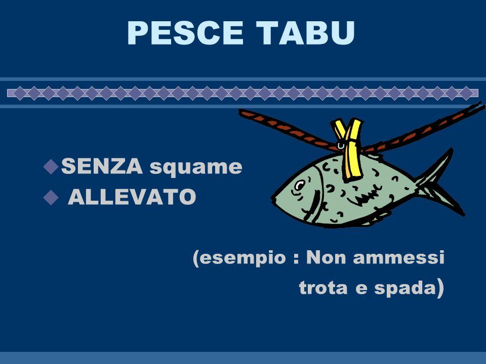 PESCE TABU SENZA squame ALLEVATO (esempio : Non ammessi trota e spada )