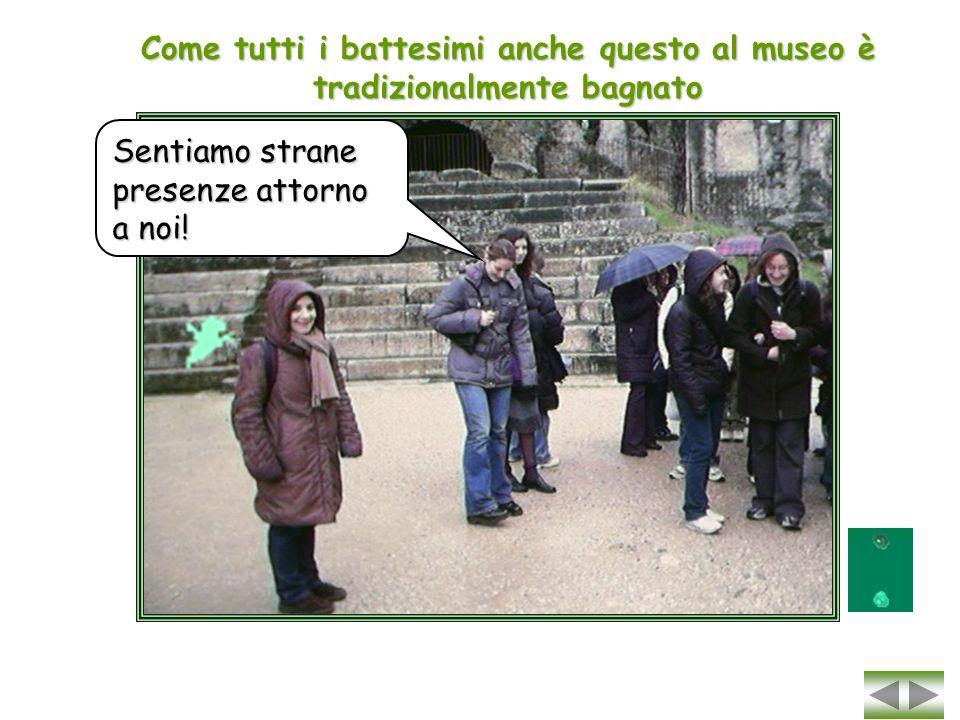Soggettive della Terza C dal Museo Archeologico di Verona Diario fotografico