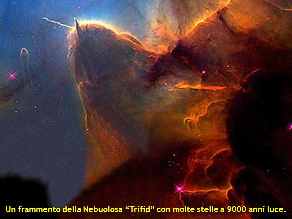 Due galassie che si stanno unendo NGC 2207 e IC 2163 che si trovano a 114 milioni di anni luce.
