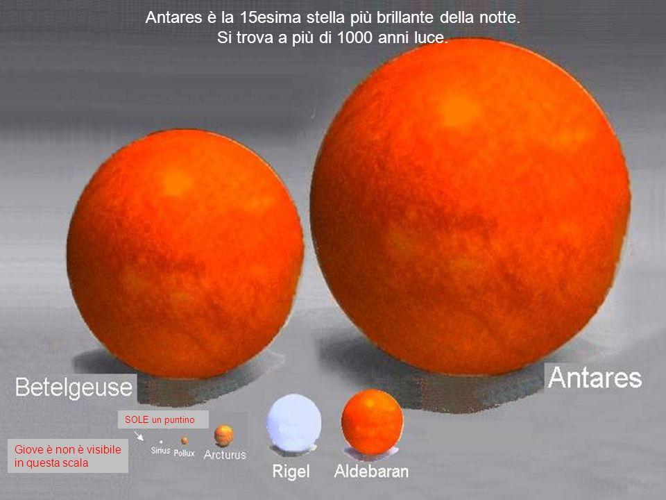 Sole Sirio Arturus Giove è un puntino sulla punta della freccia. La Terra non è visibile in questa scala Polluce
