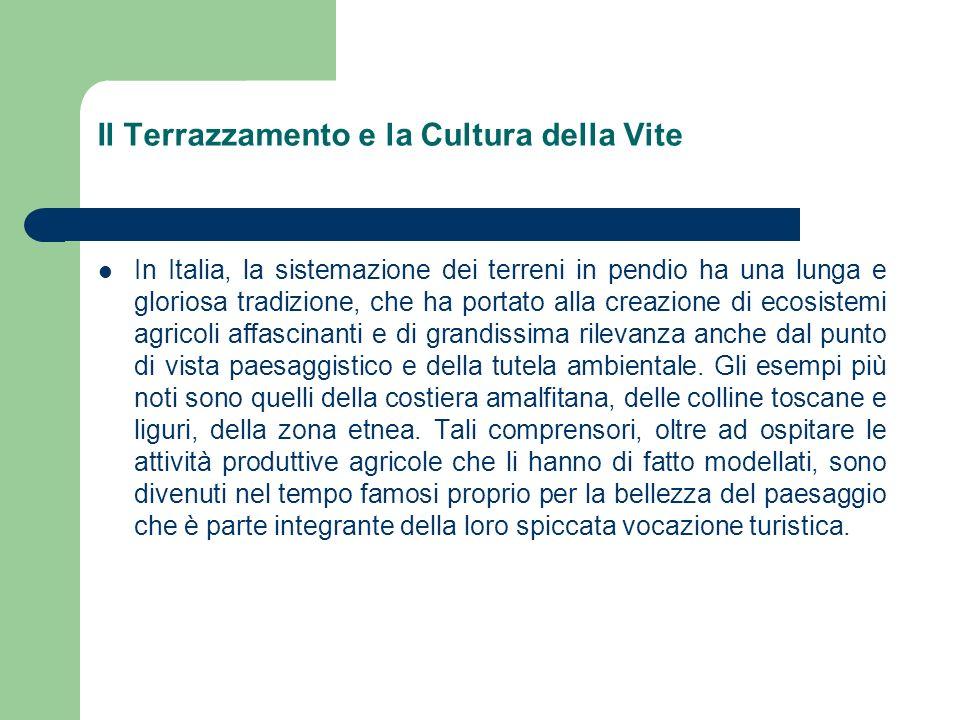 Il Terrazzamento e la Cultura della Vite Nel comparto viticolo, che per superfici coinvolte ed indotto è uno dei più importanti dellagricoltura italiana, le aree terrazzate montane di maggiore estensione si trovano nelle Cinque Terre in Liguria, in Valle dAosta, nellAlto Canavese in Piemonte e in Valtellina.