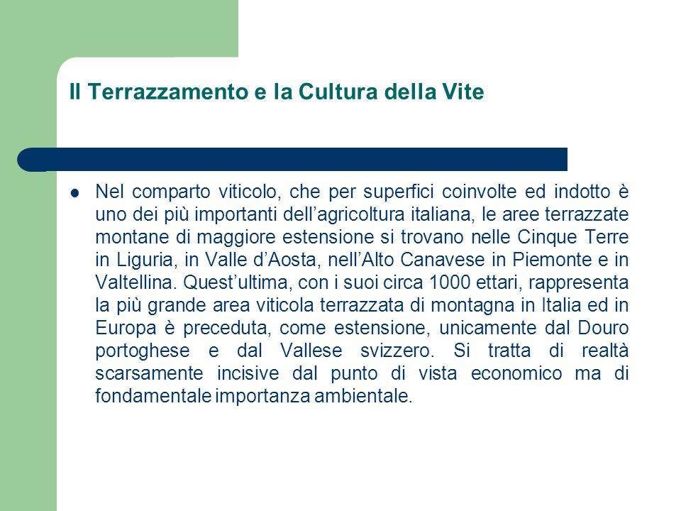 Il Terrazzamento e la Cultura della Vite GiacituraIstat 1990Inventario Viticolo Montagna71.942 (7.8%)14.929 (2%) Collina536.742 (58.5%)314.631 (37%) Pianura308.226 (33.7%)525.686 (61%) Totali916.910 (100%)855.246 (100%)