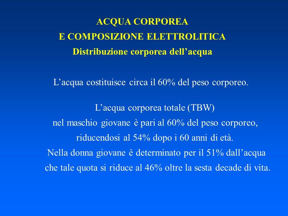 ACQUA CORPOREA E COMPOSIZIONE ELETTROLITICA Distribuzione corporea dellacqua Lacqua costituisce circa il 60% del peso corporeo. Lacqua corporea totale