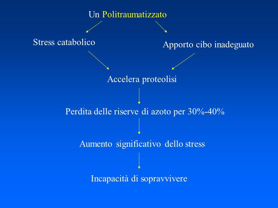 Un Politraumatizzato Apporto cibo inadeguato Accelera proteolisi Perdita delle riserve di azoto per 30%-40% Aumento significativo dello stress Incapac