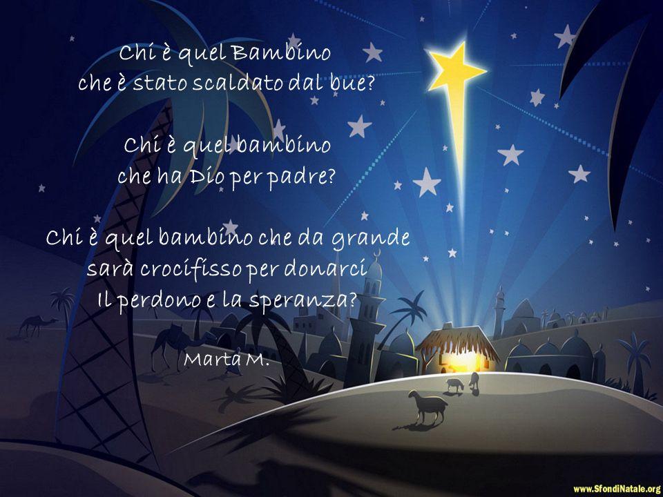 Chi è? Riflessioni sul Natale offerte dai bambini di classe 2^A Scuola Don Trombelli Natale 2012 Transizione manuale