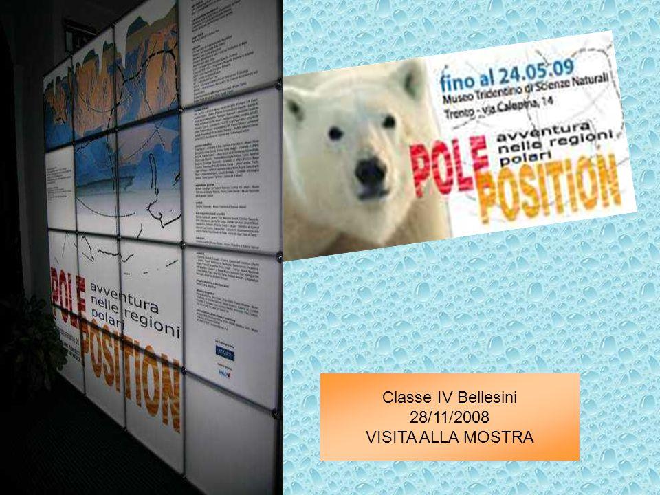 Classe IV Bellesini 28/11/2008 VISITA ALLA MOSTRA