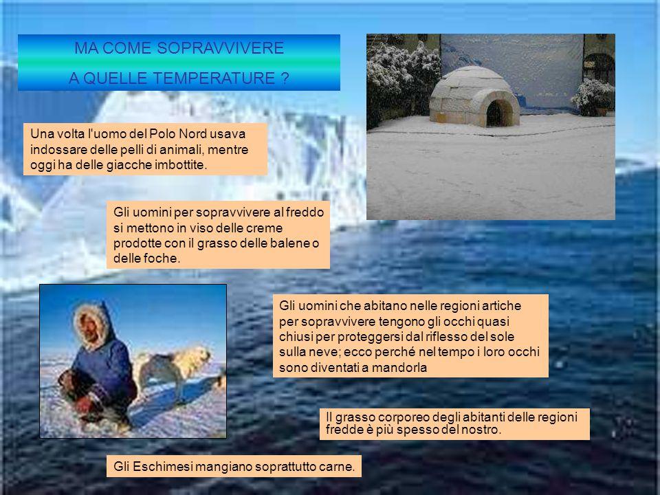 Gli uomini che abitano nelle regioni artiche per sopravvivere tengono gli occhi quasi chiusi per proteggersi dal riflesso del sole sulla neve; ecco pe