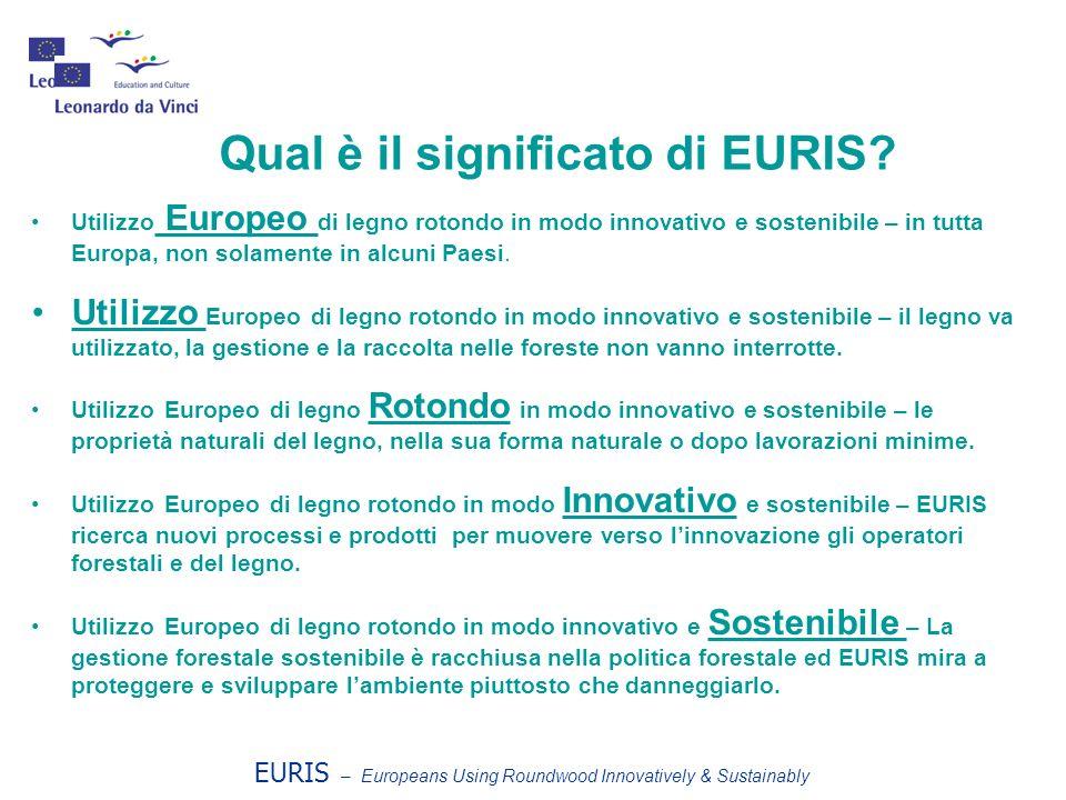 Qual è il significato di EURIS? Utilizzo Europeo di legno rotondo in modo innovativo e sostenibile – in tutta Europa, non solamente in alcuni Paesi. U