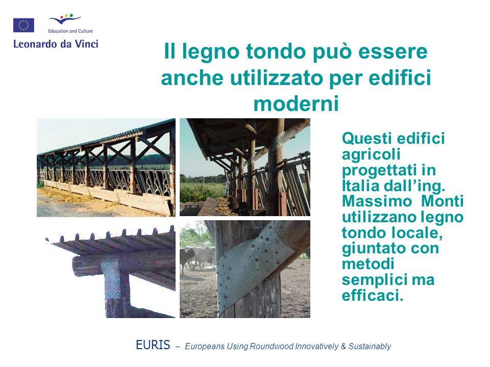 Il legno tondo può essere anche utilizzato per edifici moderni Questi edifici agricoli progettati in Italia dalling. Massimo Monti utilizzano legno to