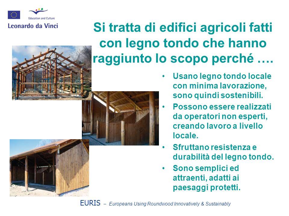 Si tratta di edifici agricoli fatti con legno tondo che hanno raggiunto lo scopo perché …. Usano legno tondo locale con minima lavorazione, sono quind