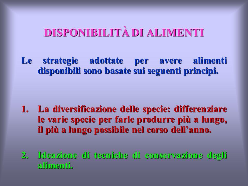 DISPONIBILITÀ DI ALIMENTI Le strategie adottate per avere alimenti disponibili sono basate sui seguenti principi.