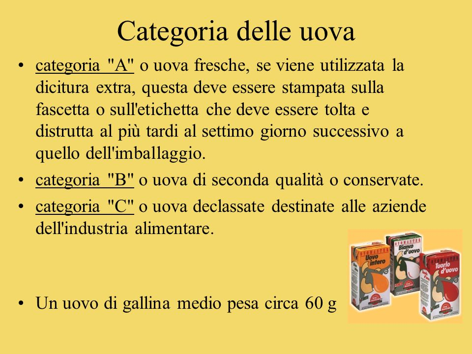 Categoria delle uova categoria