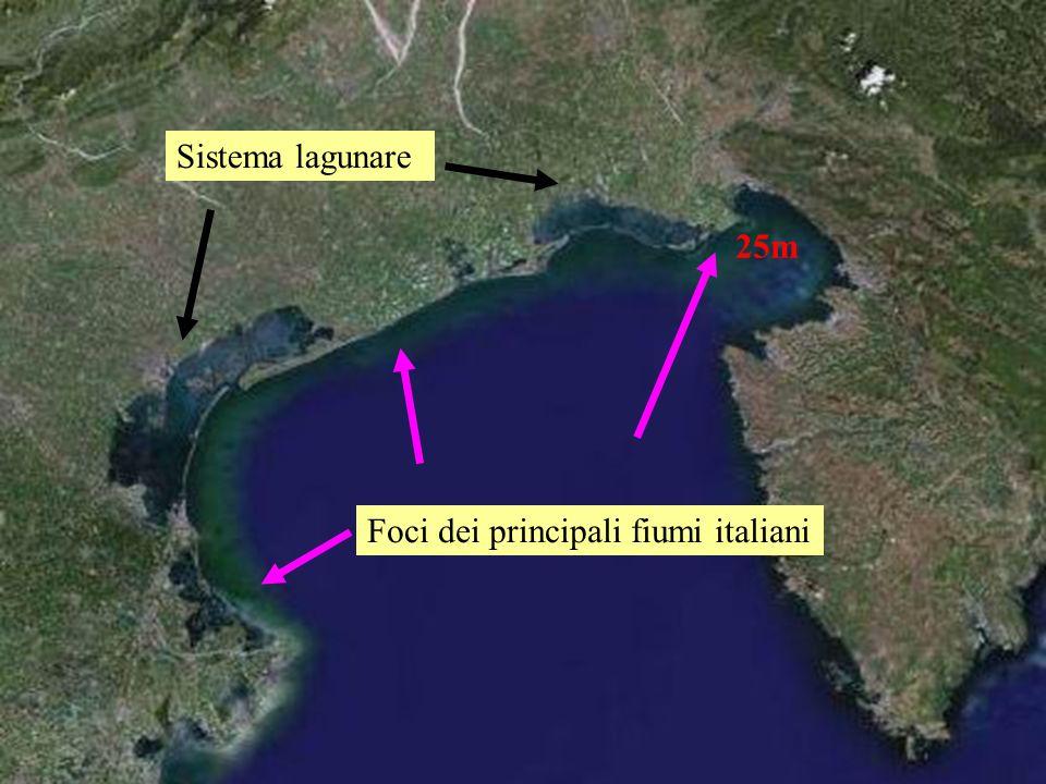 Sistema lagunare Foci dei principali fiumi italiani 25m