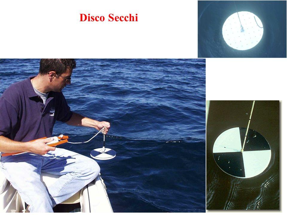 Disco Secchi