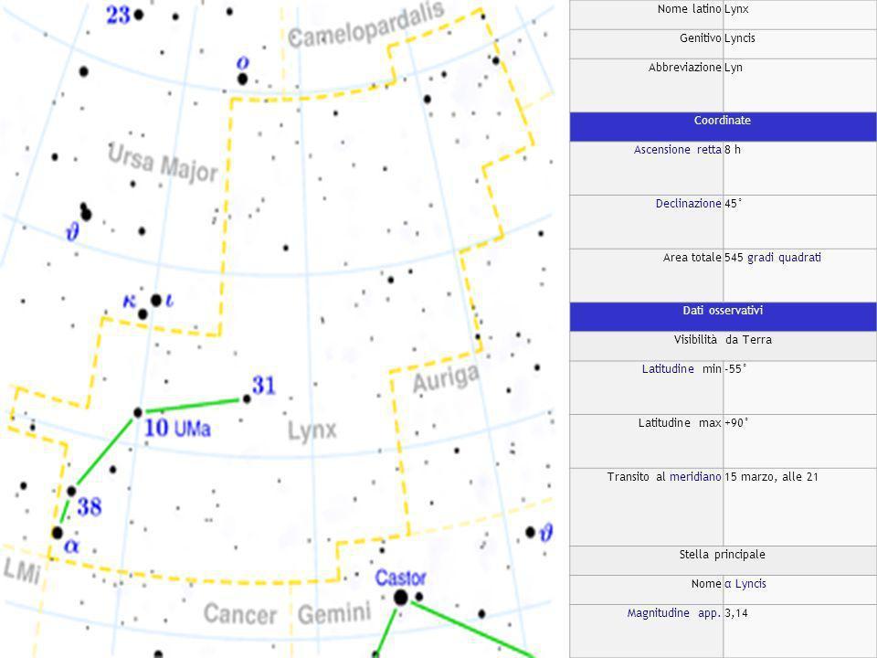 Nome latinoLynx GenitivoLyncis AbbreviazioneLyn Coordinate Ascensione retta8 h Declinazione45° Area totale545 gradi quadrati Dati osservativi Visibilità da Terra Latitudine min-55° Latitudine max+90° Transito al meridiano15 marzo, alle 21 Stella principale Nomeα Lyncis Magnitudine app.3,14