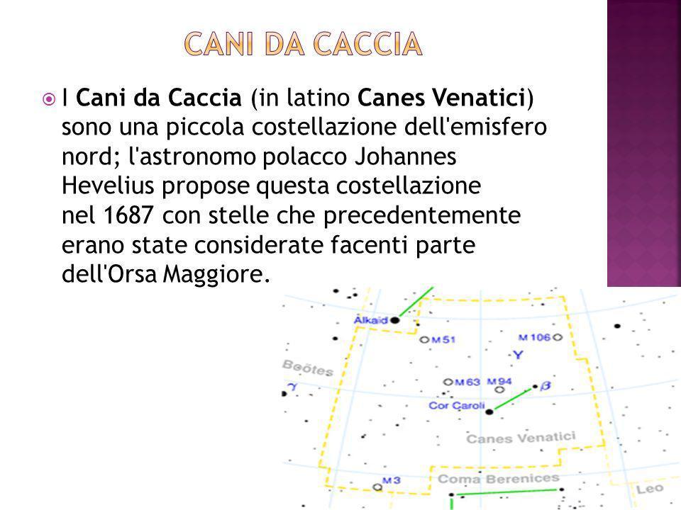 I Cani da Caccia (in latino Canes Venatici) sono una piccola costellazione dell emisfero nord; l astronomo polacco Johannes Hevelius propose questa costellazione nel 1687 con stelle che precedentemente erano state considerate facenti parte dell Orsa Maggiore.