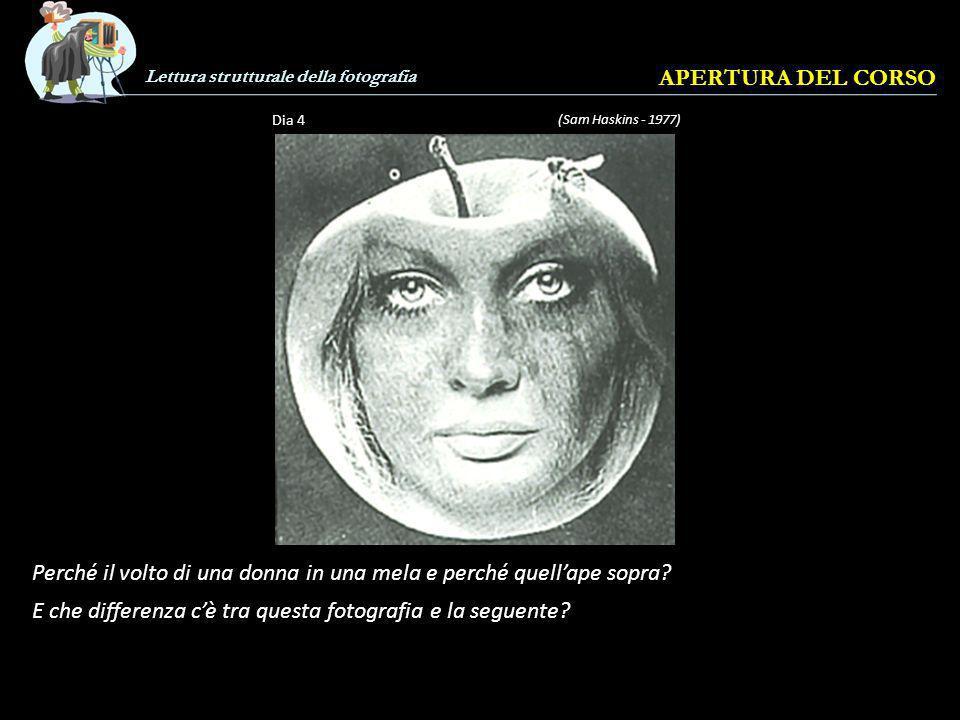 Lettura strutturale della fotografia APERTURA DEL CORSO (Sam Haskins - 1977) Dia 4 Perché il volto di una donna in una mela e perché quellape sopra.