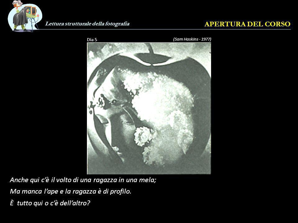 Lettura strutturale della fotografia APERTURA DEL CORSO (Sam Haskins - 1977) Dia 5 Anche qui cè il volto di una ragazza in una mela; Ma manca lape e la ragazza è di profilo.