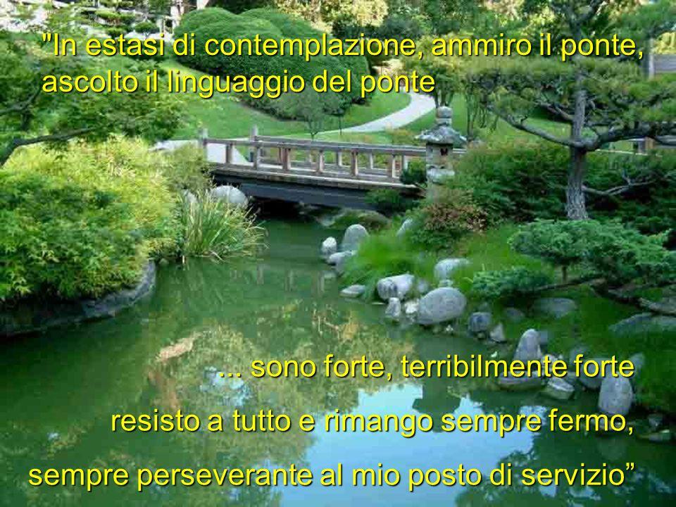 In estasi di contemplazione, ammiro il ponte, ascolto il linguaggio del ponte...