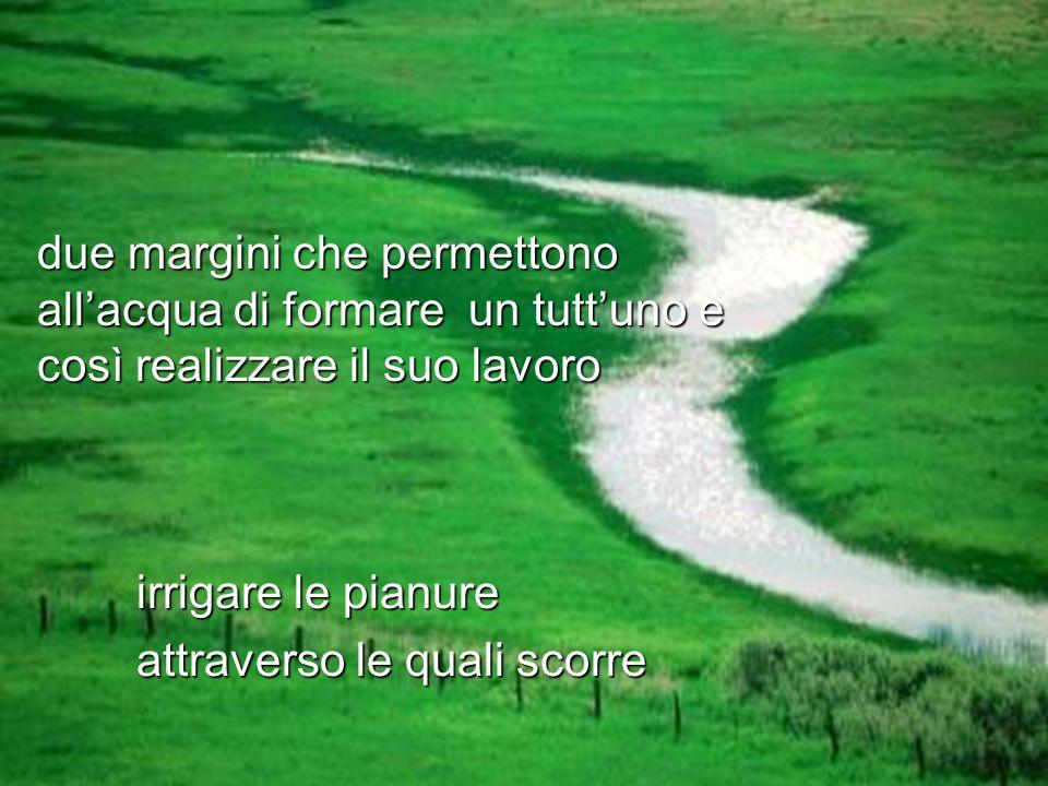 due margini che permettono allacqua di formare un tuttuno e così realizzare il suo lavoro irrigare le pianure attraverso le quali scorre