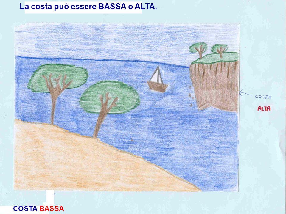 La costa può essere BASSA o ALTA. COSTA BASSA