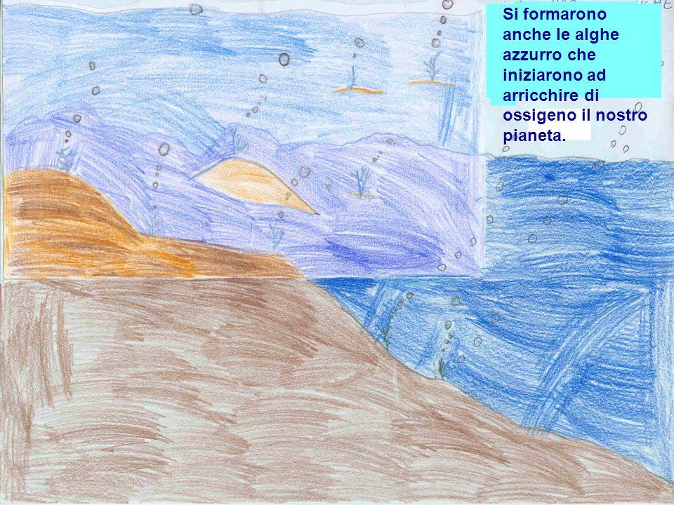 Si formarono anche le alghe azzurro che iniziarono ad arricchire di ossigeno il nostro pianeta.