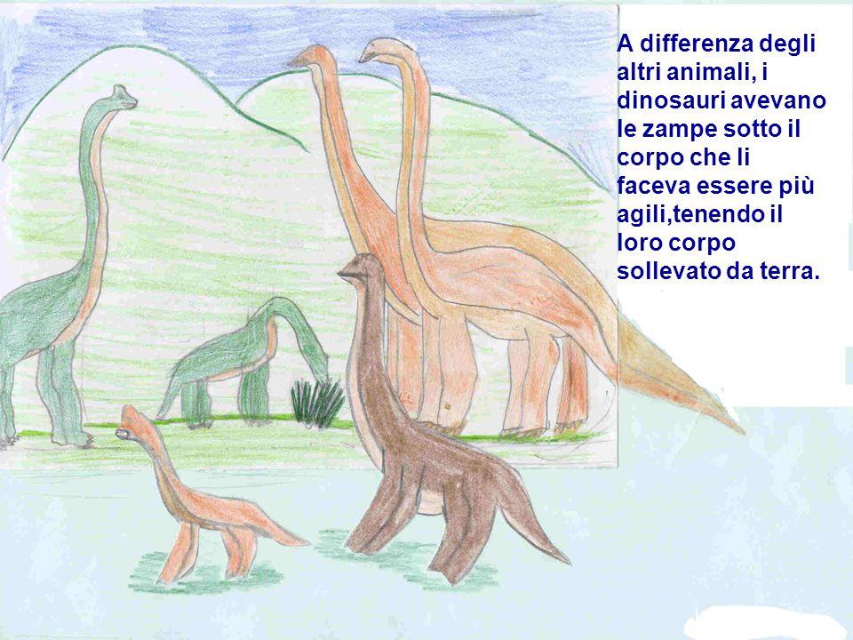 A differenza degli altri animali, i dinosauri avevano le zampe sotto il corpo che li faceva essere più agili,tenendo il loro corpo sollevato da terra.