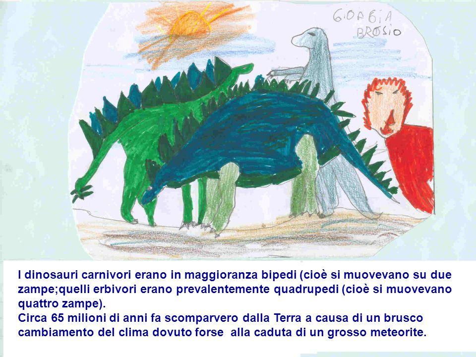 I dinosauri carnivori erano in maggioranza bipedi (cioè si muovevano su due zampe;quelli erbivori erano prevalentemente quadrupedi (cioè si muovevano