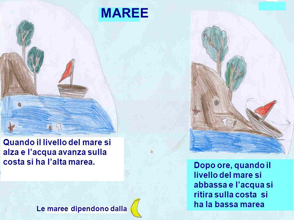 CORRENTE Ai movimenti del mare appartengono anche le correnti marine.