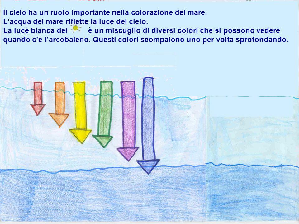 Il cielo ha un ruolo importante nella colorazione del mare. Lacqua del mare riflette la luce del cielo. La luce bianca del è un miscuglio di diversi c