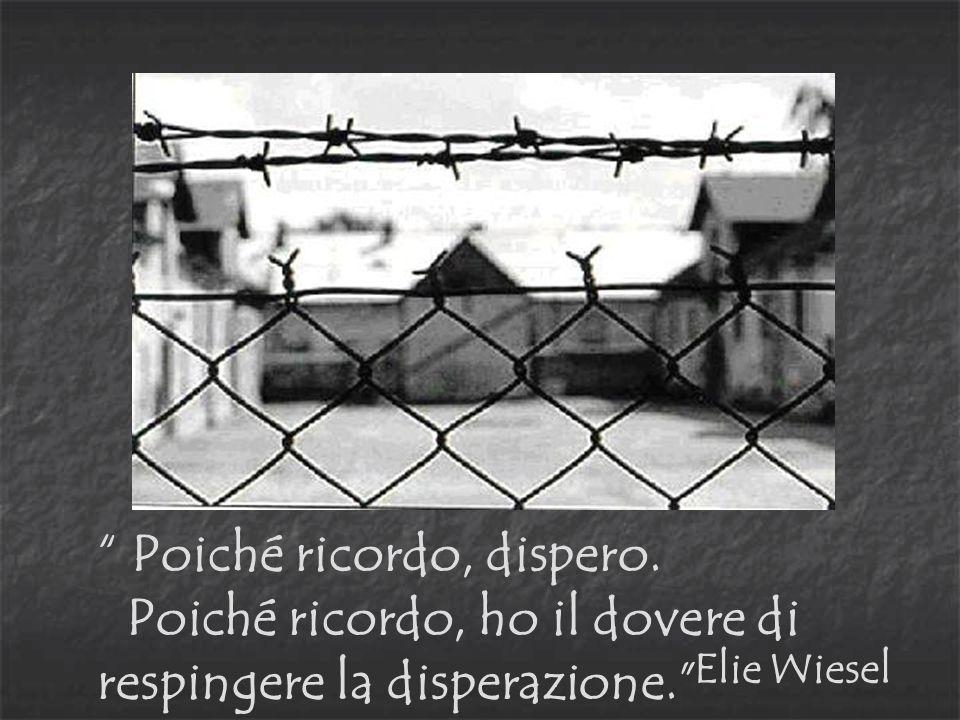 Poiché ricordo, dispero. Poiché ricordo, ho il dovere di respingere la disperazione. Elie Wiesel