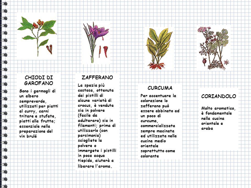 CHIODI DI GAROFANO Sono i germogli di un albero sempreverde, utilizzati per piatti al curry, carni tritare e stufate, piatti alla frutta; essenziale n