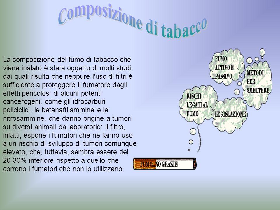 La composizione del fumo di tabacco che viene inalato è stata oggetto di molti studi, dai quali risulta che neppure l'uso di filtri è sufficiente a pr