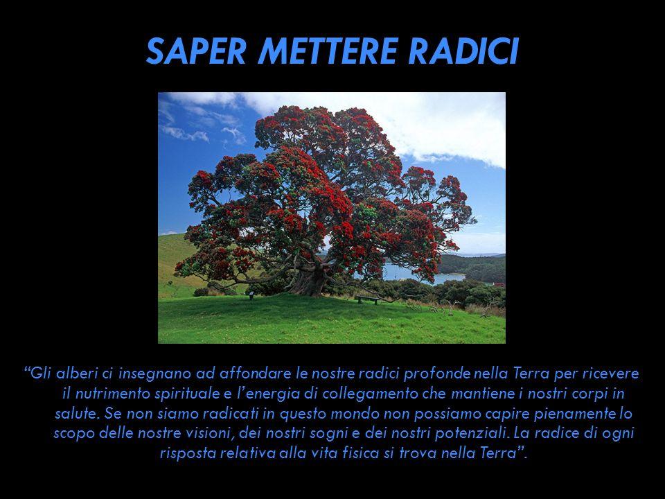 SAPER METTERE RADICI Gli alberi ci insegnano ad affondare le nostre radici profonde nella Terra per ricevere il nutrimento spirituale e lenergia di co
