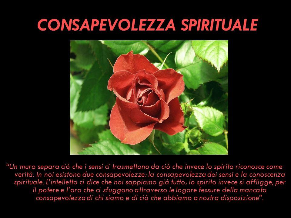 CONSAPEVOLEZZA SPIRITUALE Un muro separa ciò che i sensi ci trasmettono da ciò che invece lo spirito riconosce come verità. In noi esistono due consap