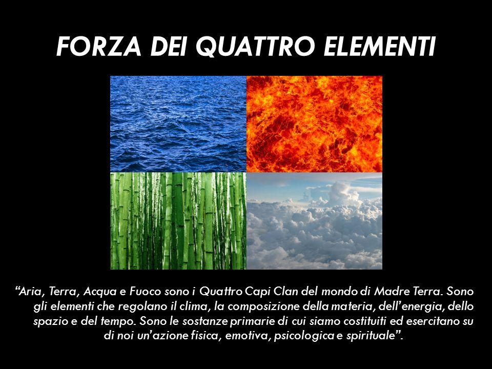 FORZA DEI QUATTRO ELEMENTI Aria, Terra, Acqua e Fuoco sono i Quattro Capi Clan del mondo di Madre Terra. Sono gli elementi che regolano il clima, la c